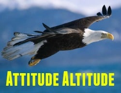 the altitude one gains from ability, motivation, and attitude depicted by an eagle soaring open-winged against a blue sky background.