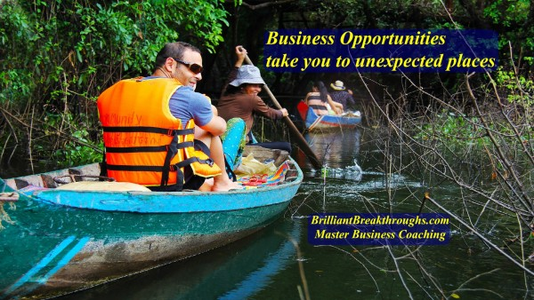 Business Opportunities illustrated by people in two canoes exploring a flooded wooded area.
