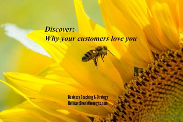 Why your customers love you illustrated by a bee flying and just about to land on the center of a big yellow sunflower's center.