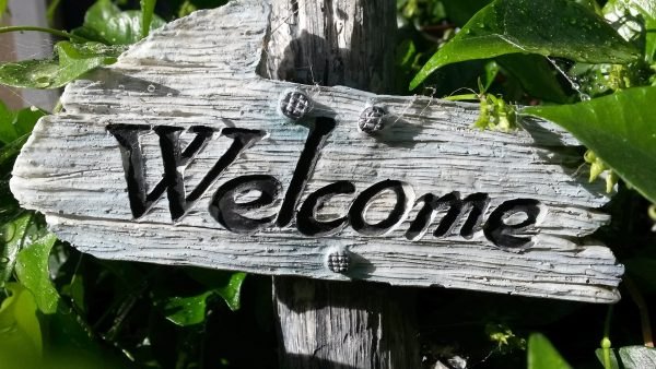 Welcome sing for a Special Invitation on a wooden sign in a nature setting.