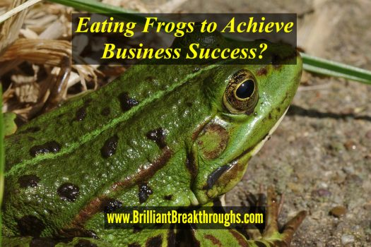Achieve Business Success illustrated by a multicolored green frog.