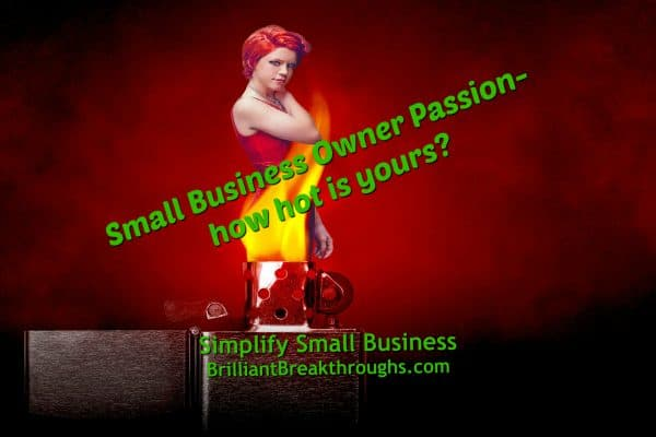 "Business Coaching by Brilliant Breakthroughs, Inc. Coaching on Small Business Owner's Year End Passion Review illustrated by a women in a red dress appearing out of the flame of a cigarette lighter. Asking ""Small Business Owner Passion - how hot is yours?"""