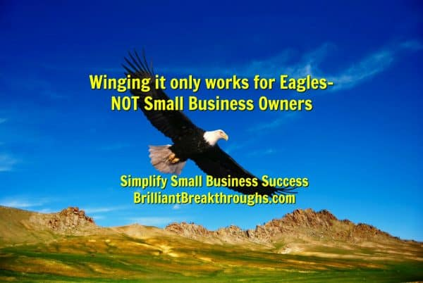 Business Coaching by Brilliant Breakthroughs, Inc. Article on how Winging It is a bad strategy for Small Business Owners.