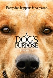 Business Coaching by Brilliant Breakthroughs, Inc. A Dog's Purpose Movie Poster with the Main Character teaching us what purpose is all about.
