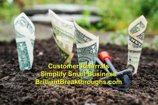 Small Business Coaching by Brilliant Breakthroughs, Inc. Addressing: Customer Referrals illustrated by dollar bills emerging from a tilled garden.
