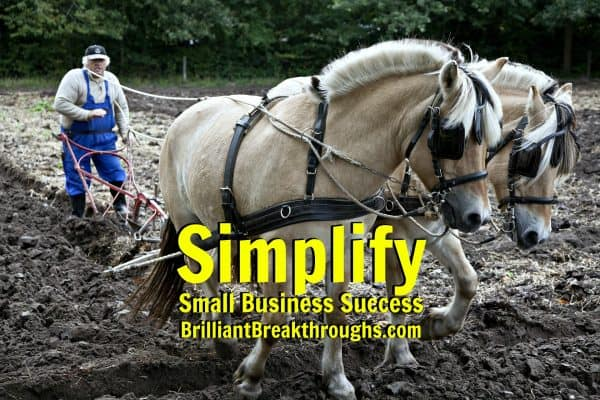 Small Business Coaching by Brilliant Breakthroughs, Inc. Planting seeds illustrated by a farmer in the field with 2 horses plowing the field.