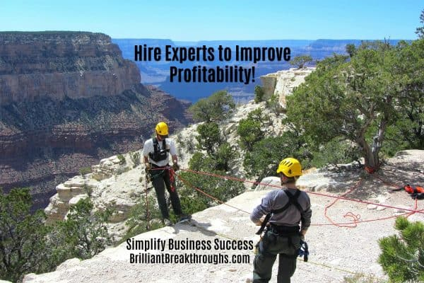 "Small Business Coaching by Brilliant Breakthroughs, Inc. ""Hire Experts"" illustrated by 2 mountain climbers at the Grand Canyon."