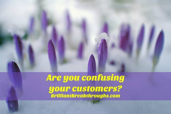Small Business Coaching by Brilliant Breakthroughs, Inc.  Marketing Message illustrated by purple crocus flowers pushing through snow.