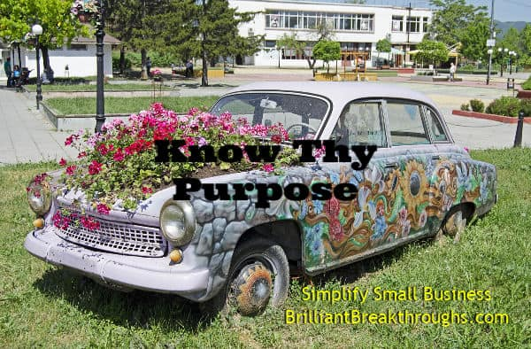 Small Business Coaching by Brilliant Breakthroughs, Inc.  Topic: Defining Purpose illustrated with old card used as a flower bed.