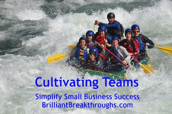 Small Business Coaching by Brilliant Breakthroughs, Inc. Topic: Cultivating Teams illustrated by a team of white water rafters.