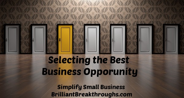 Small Business Coaching by Brilliant Breakthroughs, Inc. Topic: Business Opportunity illustrated but several doors with one painted in gold-tone.