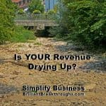 Small Business Coaching by Brilliant Breakthroughs, Inc. Topic: What Generate Revenue Illustrated by a dried-up river bed.