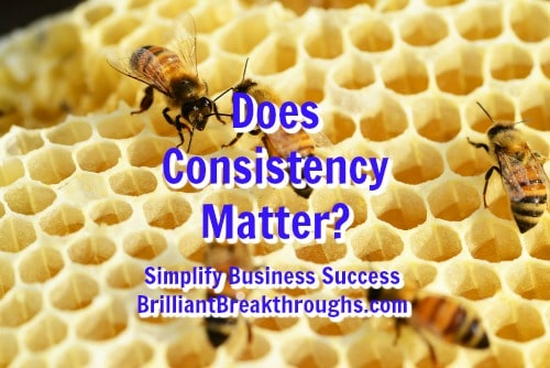 Small Business Coaching by Brilliant Breakthroughs, Inc. Topic: Does Consistency Matter? Illustrated by a beehive.