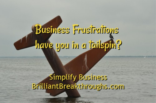 Small Business Coaching by Brilliant Breakthroughs, Inc. Topic: Business Frustrations illustrated of a plan crash into the ocean.