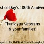 Small Business Coaching by Brilliant Breakthroughs, Inc. Topic: Veterans Day illustrated by a single red poppy in a field.