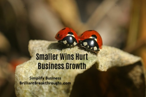 Smaller Wins illustrated by two red lady bugs on a leaf